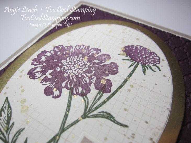 Field flowers - thankful2