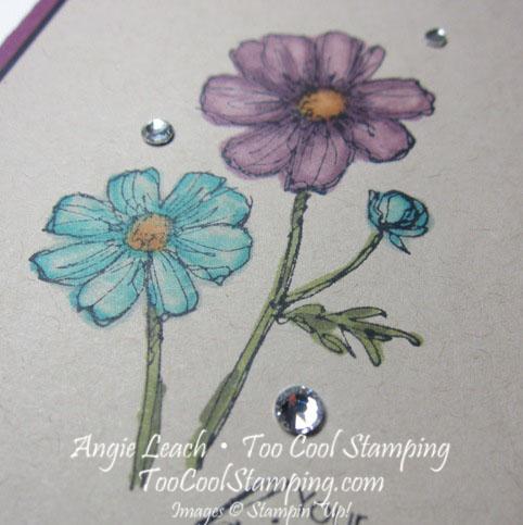 Bloom with Blendas - kindness2