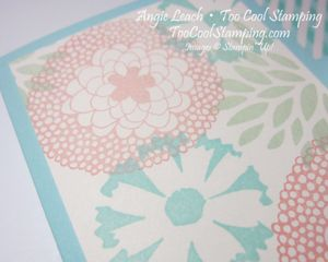 Scallop gate cards - pool 4