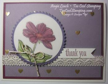 Peaceful petals purple - razzleberry