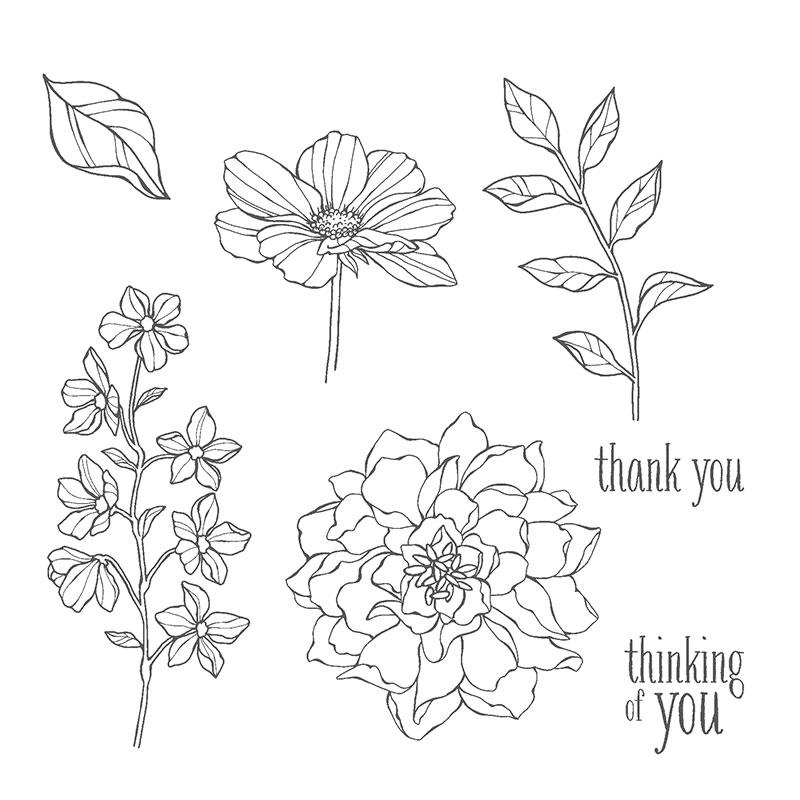 Peaceful petals 133104G