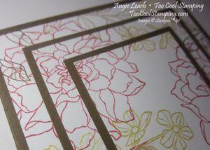 Triple peaceful petals - primrose 3