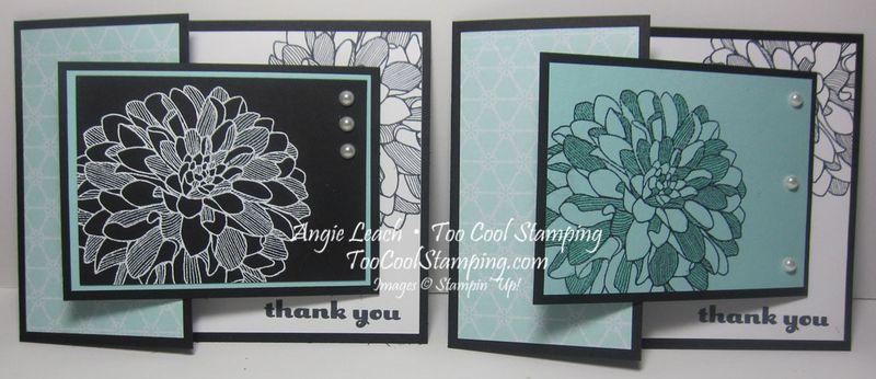 Joy fold dahlias - two cool