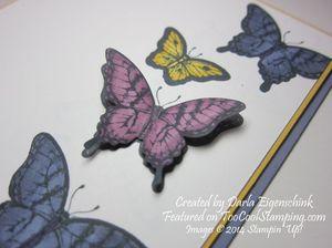 Darla - papillion potpourri blendabilities 2 copy