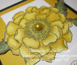 Kathe - bloom for you daffodil 2 copy