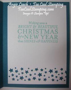 Bright & beautiful silver - indigo 4