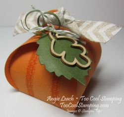 Pumpkin curvy keepsakes - cool