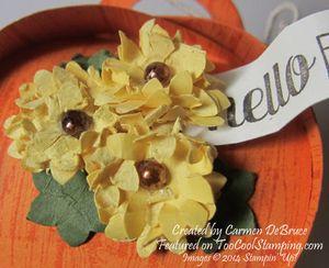 Carmen - curvy sunflower box copy