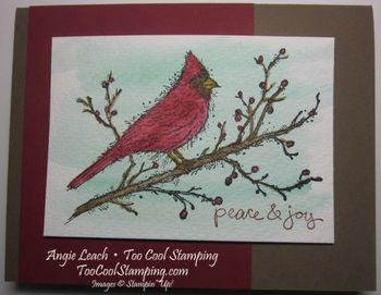 Beauty cardinal - peace joy