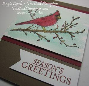 Beauty cardinal - greetings 2