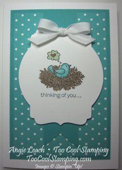 For the birds - bermuda nest