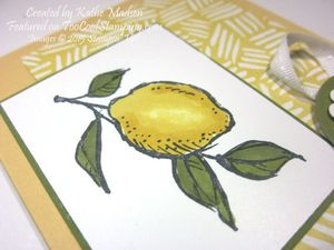 Kathe - a happy thing lemon 2 copy