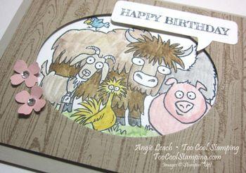 From the herd - happy birthday 2