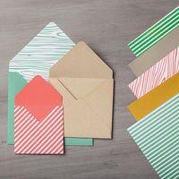 In color envelope 138312G