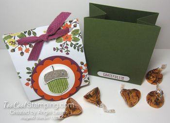 Acorn gift bag-bag A6