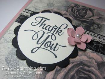 Timeless elegance tinted roses - blush4