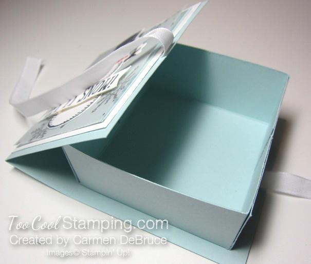 Carmen - snow place box 4
