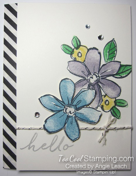 Tami garden in bloom- light 1