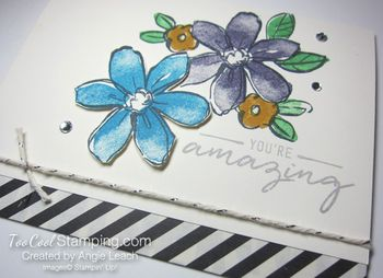 Tami garden in bloom- dark 4