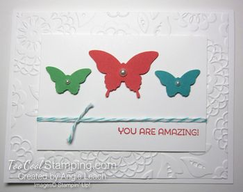 Amazing Butterfly Trio - bright