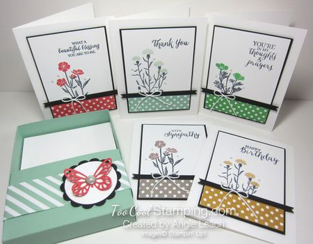 Sab celebration box - wildflower 5 cards & box
