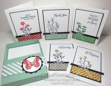 Sab celebration box - wildflower 5 cards & box