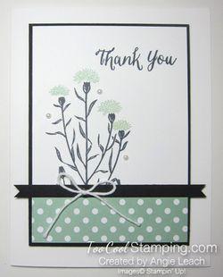 Sab celebration box - wildflower mint