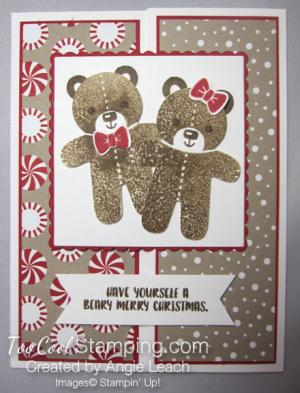 A gate fold ccc- teddy bears two