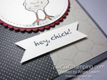 Hey chick chicken wire - funky chicken 3