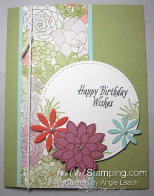Succulent birthday - colorful dsp
