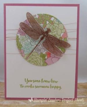 Dragonfly Dreams Succulent Garden - Jenn Tinline