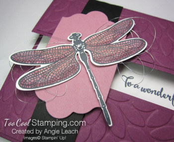 Dragonfly Dreams Gate Fold Window - razzleberry 3