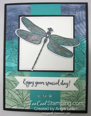 Inside The Lines Dragonflies - bermuda