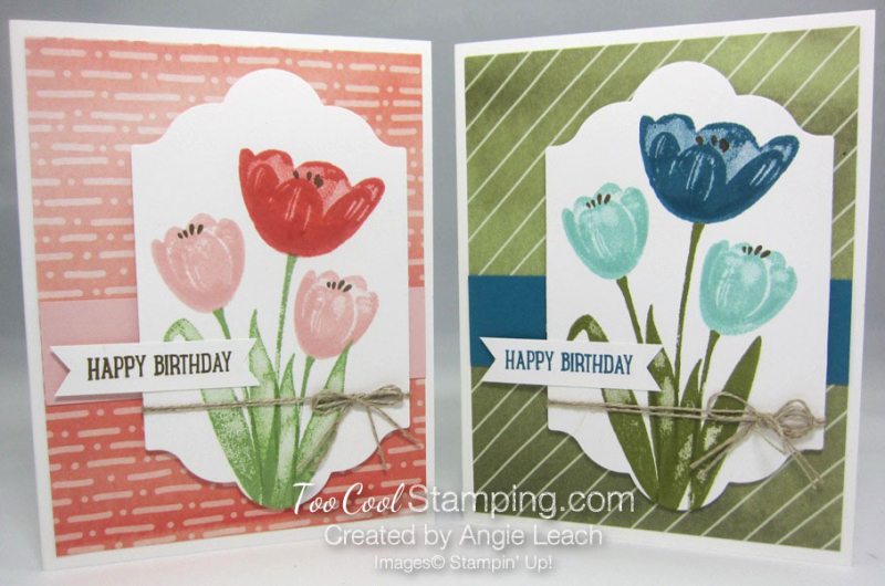Tranquil Tulips Trio - two cool