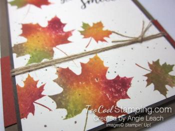 Colorful seasons baby wipe - suede 3