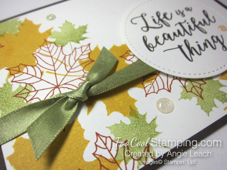 Colorful seasons falling leaves - espresso 3