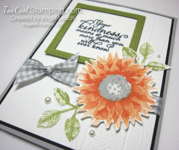 Painted Harvest Sentiment Window Cards - peach 2