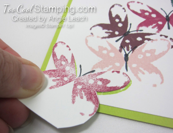 Watercolor wings in color cards - lime 5
