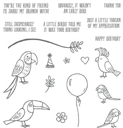 Bird banter 145852G