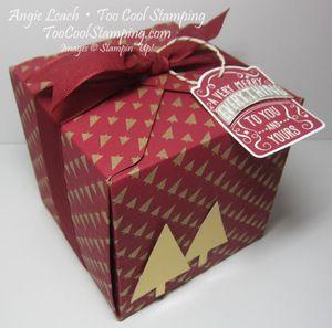 Cherry gold tree box - large