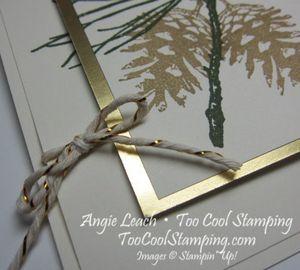 Ornamental pine dt - horizontal 3