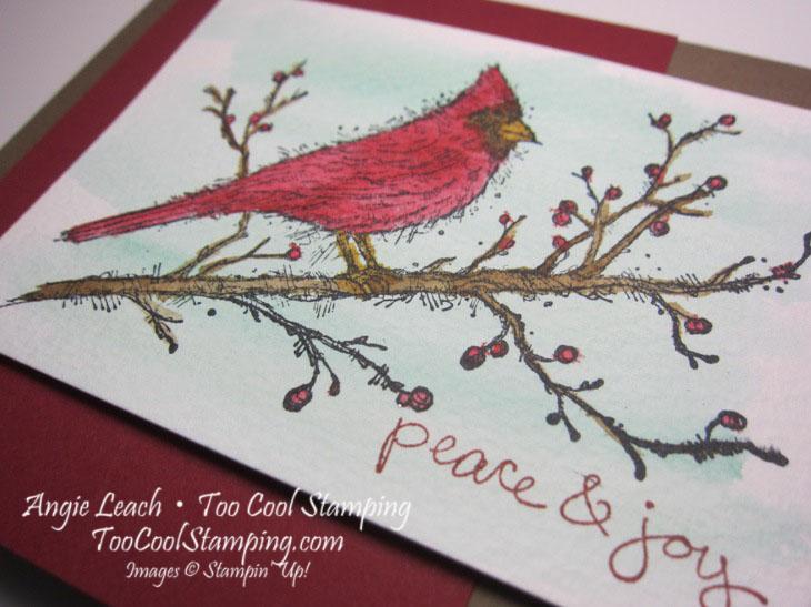 Beauty cardinal - peace joy 2