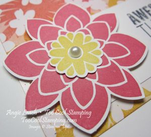 Irresistible blooms - warm thanks 3