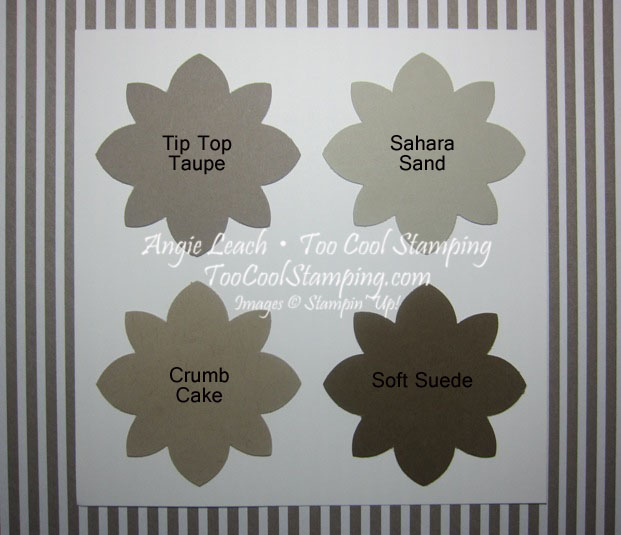 In Colors - Tip Top Taupe swatches copy