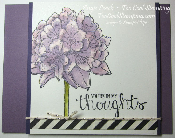 Best thoughts purple - thoughts