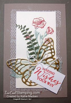 Butterfly-basics-crumb---ka