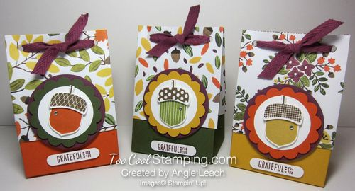 Acorn gift bag-3 bags