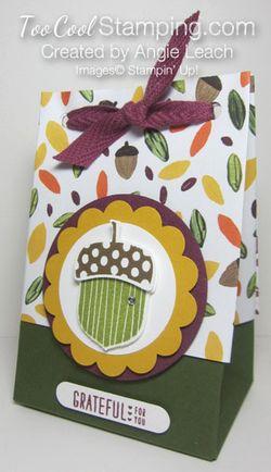 Acorn gift bag-bag A