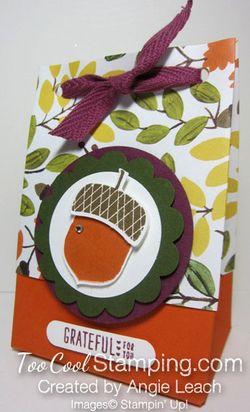 Acorn gift bag-bag C