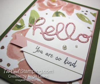 English garden hello - rose4